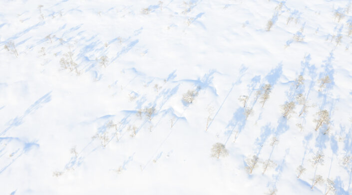 Droonifoto lumisest rabast Drone photography snowy landscapes in Estonia